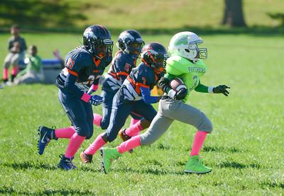 (10U) Broncos vs MPG Panthers -13
