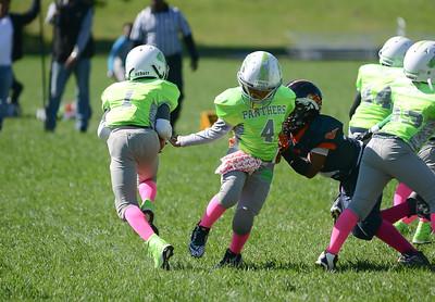 (10U) Broncos vs MPG Panthers -2