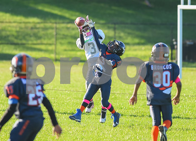 (12U) Broncos vs MPG Panthers -14