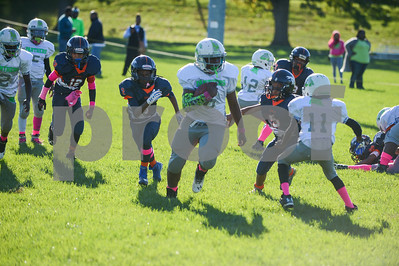 (12U) Broncos vs MPG Panthers -6
