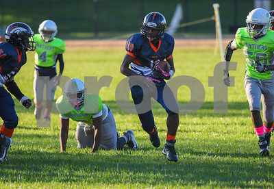 (14U) Broncos vs MPG Panthers -2