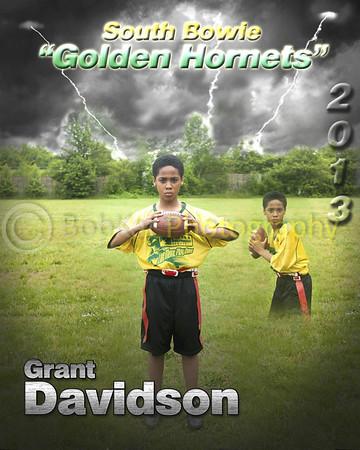Hornet player poster_Grant