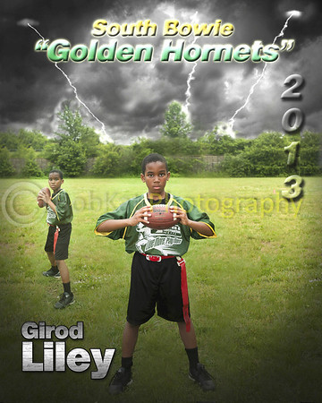 Hornet player poster_Liley