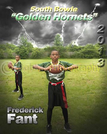 Hornet player poster_Fant