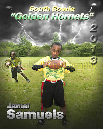 Hornet player poster_Jamel
