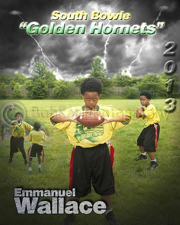 Hornet player poster_Emmanuel