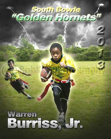 Hornet player poster_Warren