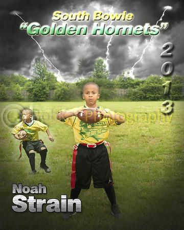 Hornet player poster_Noah
