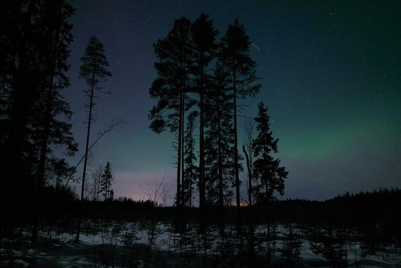 Northern lights, forest, Kälviä-Kelviå, Finland Välikylä