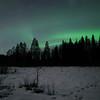 Northern lights, forest, Kälviä-Kelviå, Finland