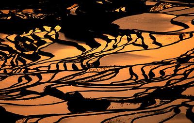 Early morning in Yuan Yang rice terrace