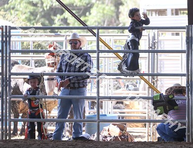 Yucaipa rodeo day 2