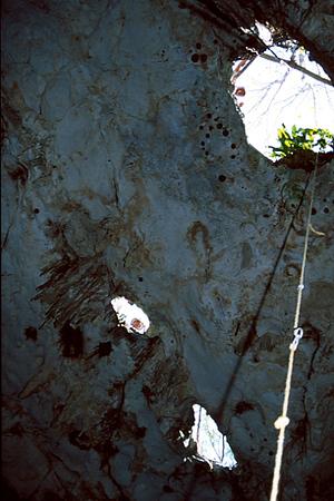 Yucatan 2001