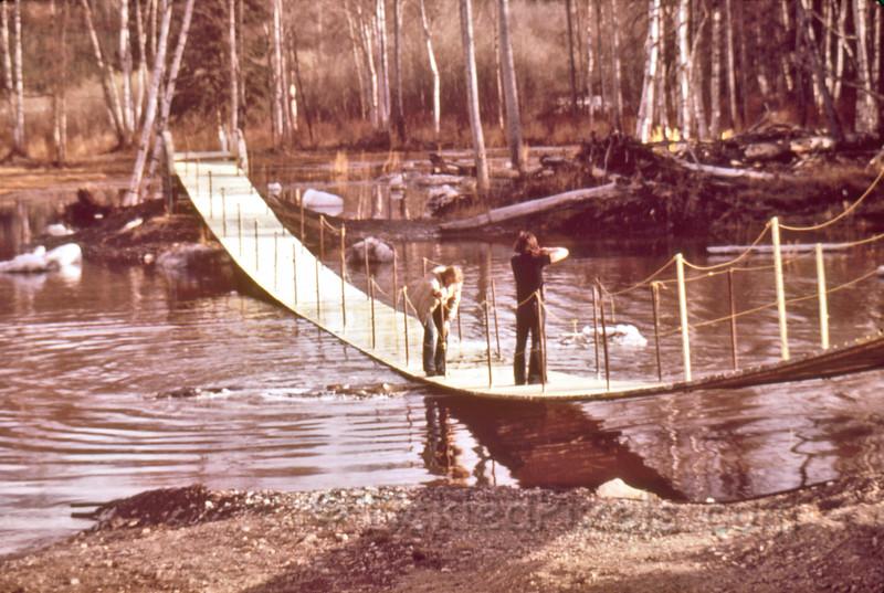 Lion's Bridge in Spring Runoff