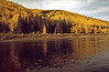 Paddle down the Fortymile - Fall Colours