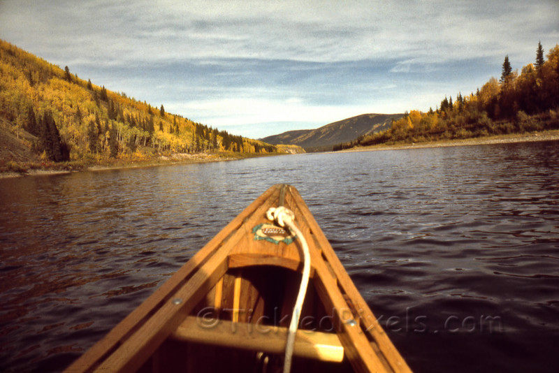 Now - Take a Paddle Down the Fortymile River