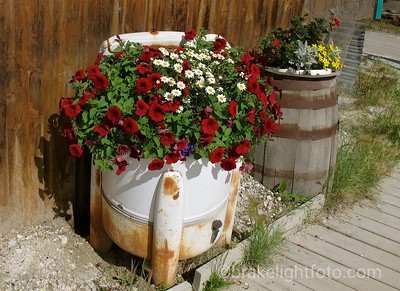 Unique Flower Pots
