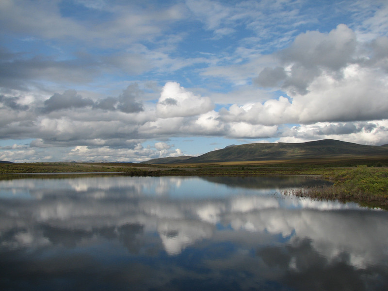 Moose Lake, no vaig gosar anar més al nord, no em quedava benzina... però vaig quedar embadalit pel petit estany... quina pau, quina immensitat de cel.