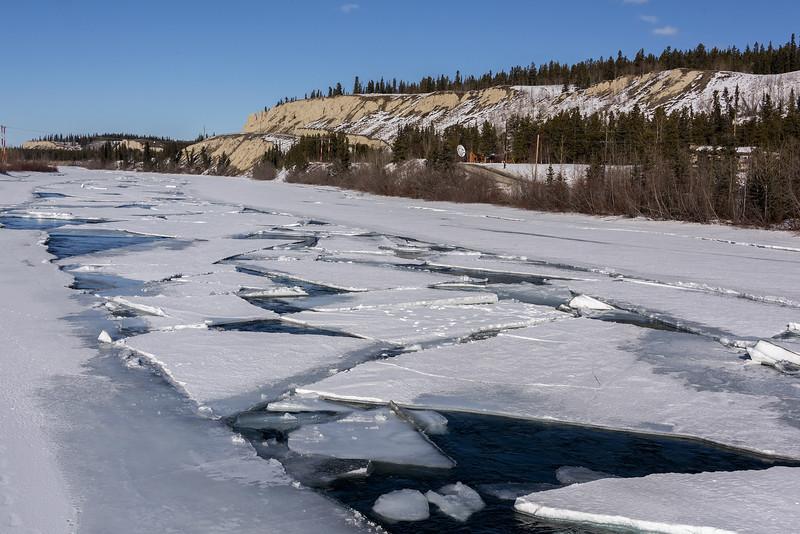 Ice-breakup-below-the-bluff,-Yukon-River,-Whitehorse,-Yukon-Territories,-Canada