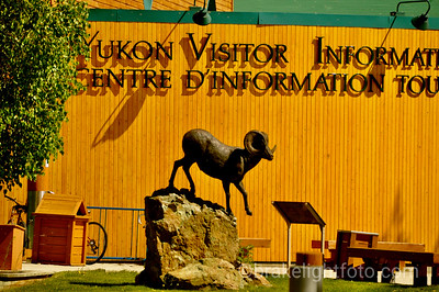 Whitehorse visitor's centre