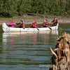 Voyageur Canoe on the Yukon River