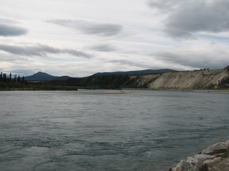 Riu / río Yukon - Whitehorse