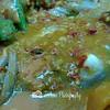 Can you see the fishhead? -- 老福源记肉骨茶Lau Hock Guan Kee Bak Ku Teh@328Joo Chiat rd