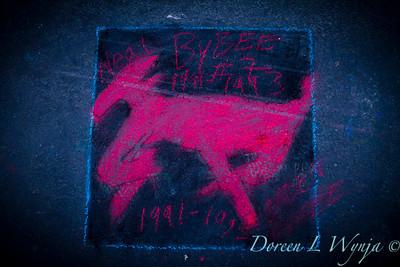 Chalk Art Prosser_010
