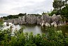 Stone Forest 5d (191)
