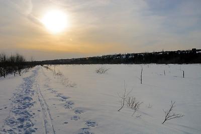 Marais en hiver_DSC0090.jpg