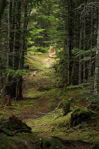Sentier David-Alexis-Déry