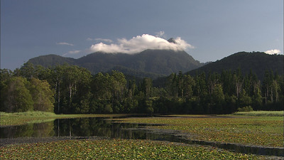Mt Warning-Wollumbin 10   (Seq: 2/10)