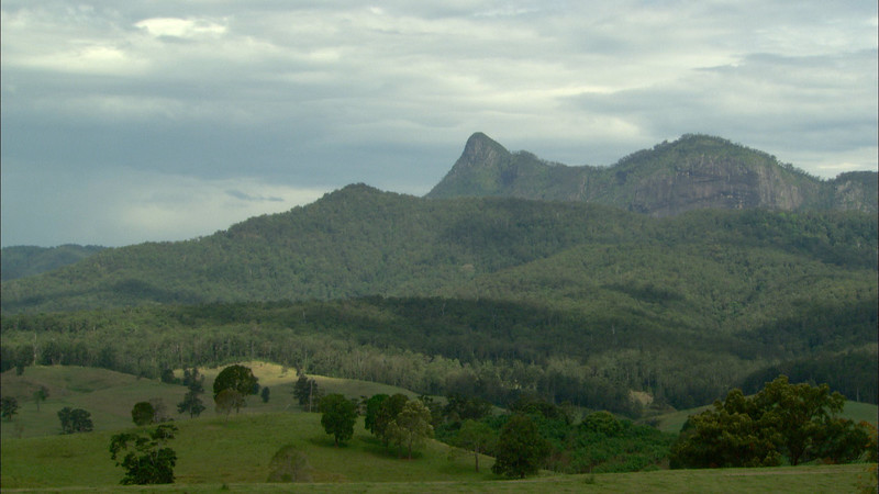 Mt Warning-Wollumbin 26