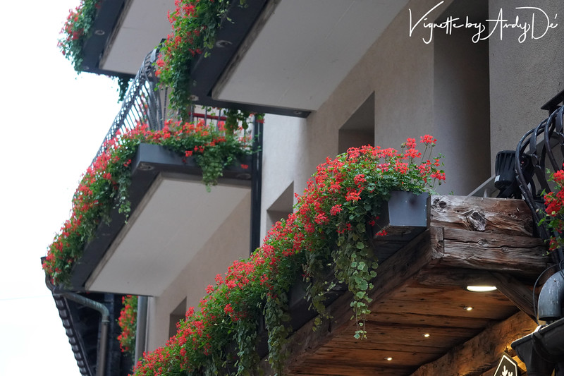 Beautiful flower beds that embellish the fronts of the Swiss Chalet styled houses and hotels - a hallmark of Zermatt and Switzerland!