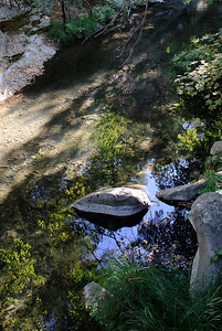 20100903-Tassajara-4557