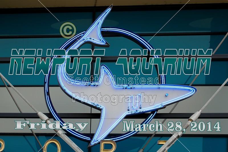 The Newport Aquarium in located in Newport, Kentucky, across the Ohio River from Cincinnati, Ohio