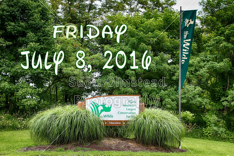 The Wilds is located in Cumberland, Ohio - Friday, July 8, 2016