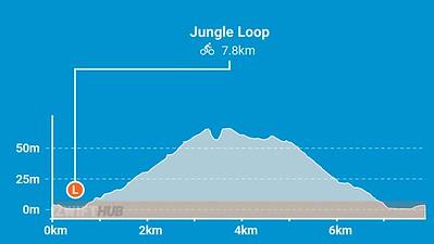 11 Jungle-Circuit