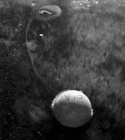 Frozen tetherball, Sun Lakes Wa.
