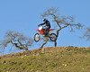 Zaca Station MX 2008 : 1 gallery with 344 photos