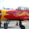 4-h pic sale air planes 058