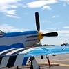 4-h pic sale air planes 036