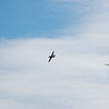 4-h pic sale air planes 250
