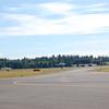 4-h pic sale air planes 135