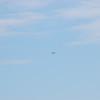 4-h pic sale air planes 261
