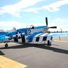 4-h pic sale air planes 037