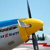 4-h pic sale air planes 040