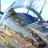 4-h pic sale air planes 209