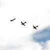 4-h pic sale air planes 243