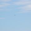 4-h pic sale air planes 262